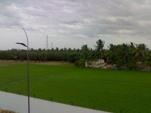 Picturesque view from men's hostel second floor